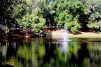 Wekiva Pond