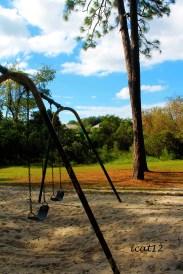 Wekiva Swings