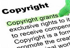 IP legislation