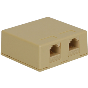 Surface Mount Box Keystone Jack with 2 CAT 5e in 8P8C for EZ