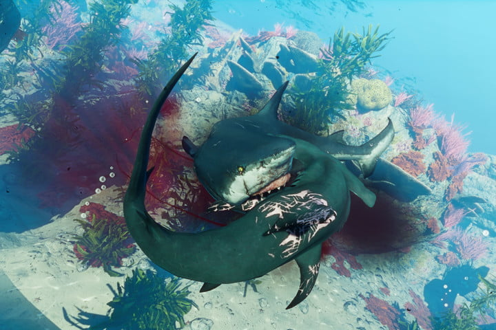 A shark devouring another shark in Maneater.