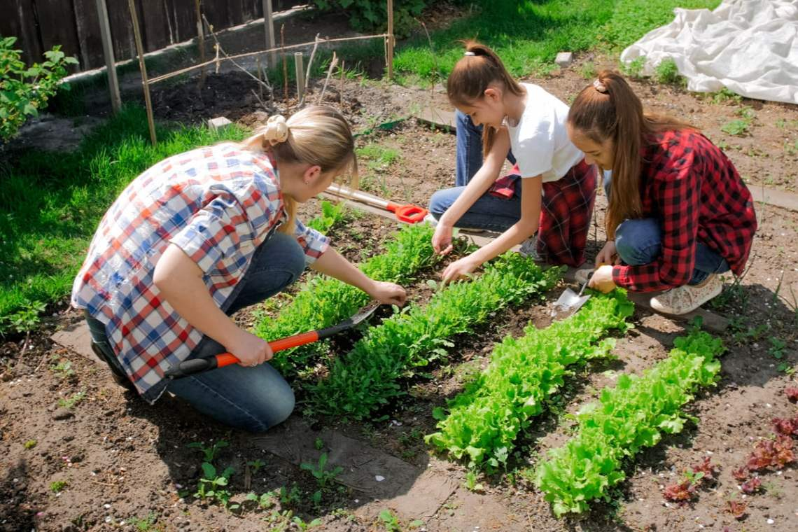 4 Vegetable Garden Games To Foster Your Child S Green Thumb Newfolks
