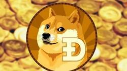 Dogecoin durdurulamıyor: Yıl başından bu yana yüzde 7 bin arttı