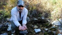Sivas'ta kuraklıktan balıklar susuz kaldı, 20 havuzdan 15'i kurudu