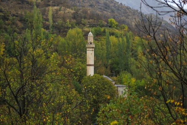 Sonbaharda doğa tutkunlarının uğrak mekanı: Arapgir