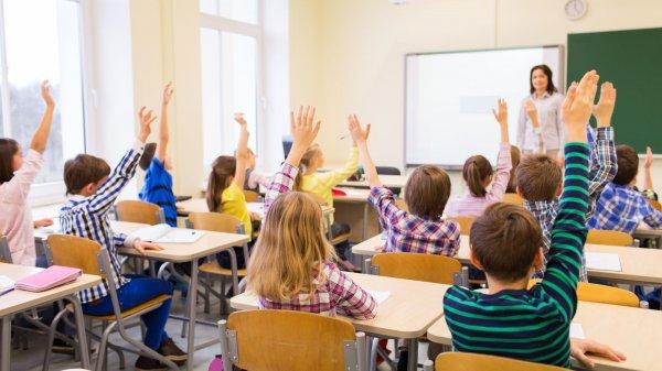 Hollanda'da öğrenciler ilkokul müdürünü seçecek
