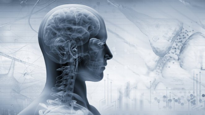 What is vagus nerve #1