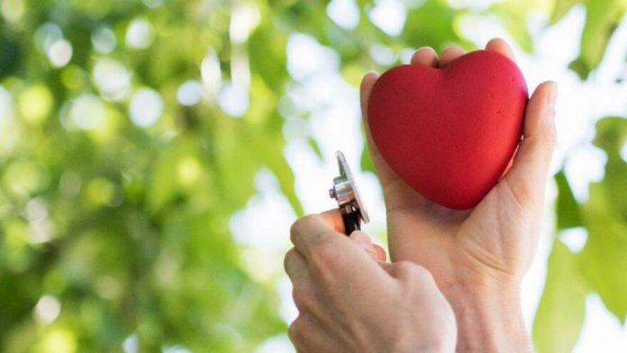 7 Nisan Dünya Sağlık Günü: Dünya Sağlık Günü en anlamlı, yazılı tebrik ve kutlama mesajları 2021.. #3
