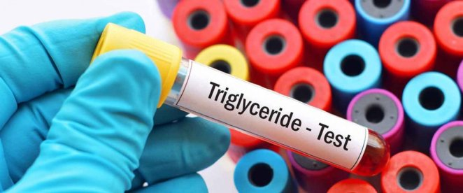 What is triglyceride #1