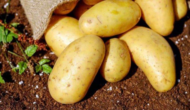 7 health benefits of potatoes #7