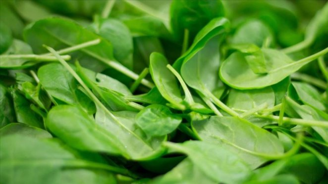 13 anti-aging foods that keep skin youthful #5