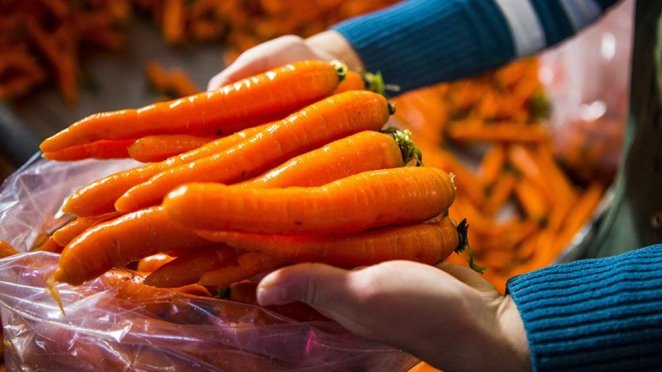 13 anti-aging foods that keep skin youthful #8