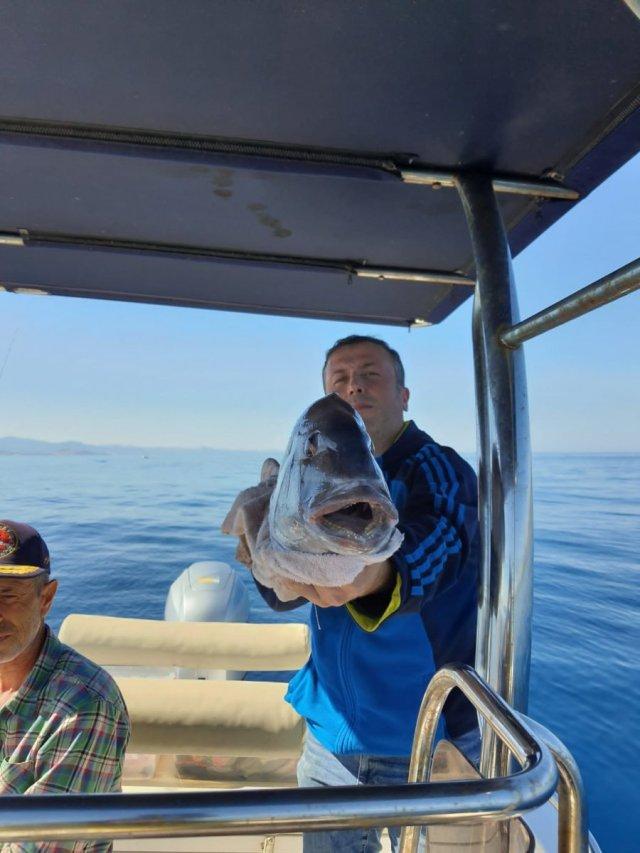 Çanakkale deki amatör balıkçı, 10 kiloluk balık yakaladı #4