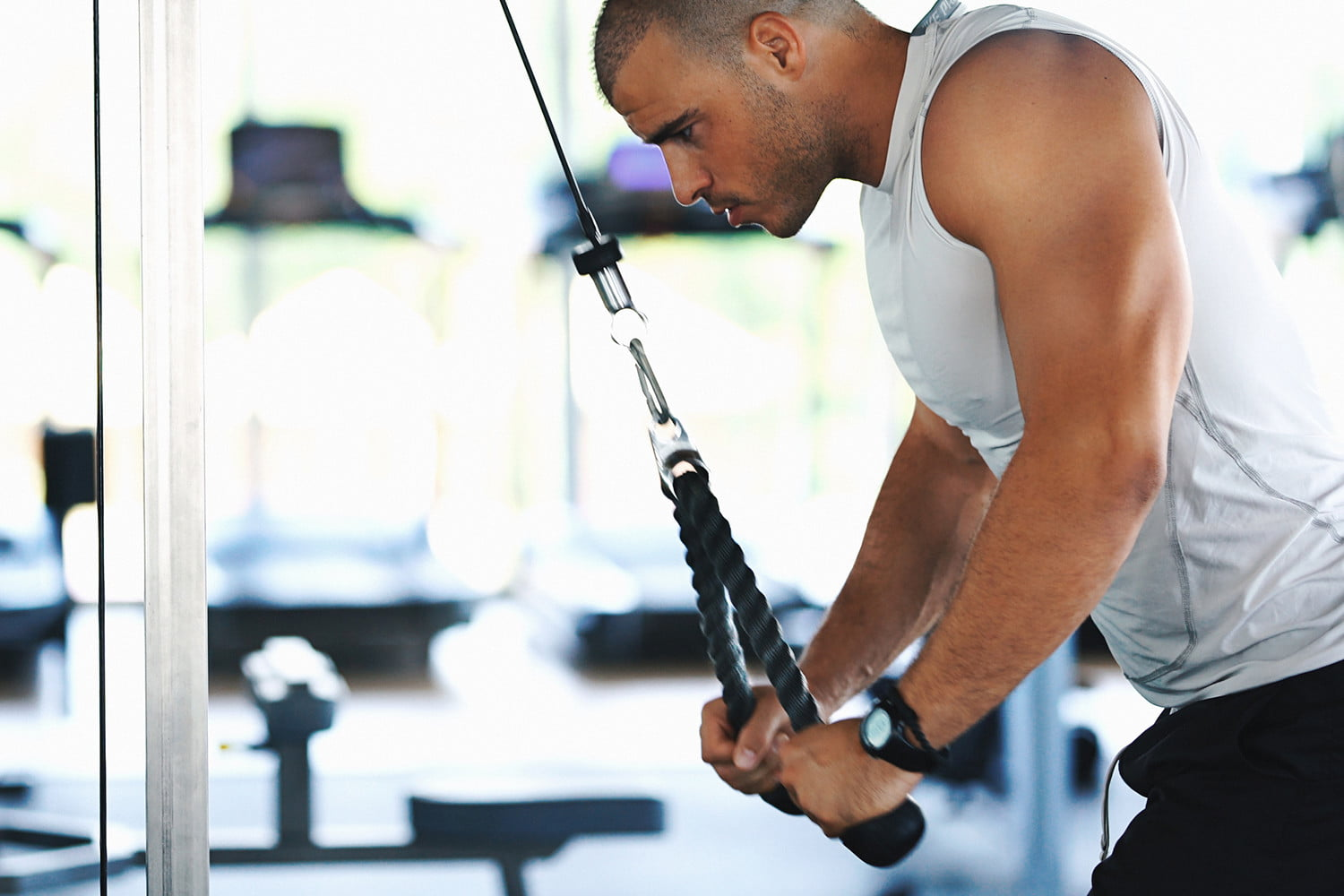 10 Best Arm Workouts For Men Build And Tone Your Muscles
