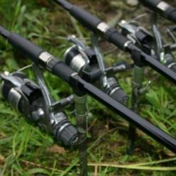 Снасть для ловли карася зависит от сезона и типа водоема