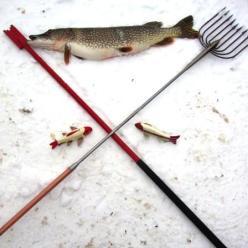 Где лучшая рыбалка в феврале?