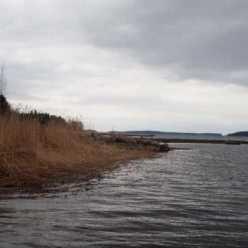 Вишневское озеро, Ленинградская область: описание, рыбалка, фото