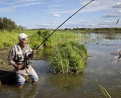 Соска для карася: рыбная ловля без промаха