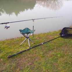 Как ловить толстолобика? Советы и рекомендации