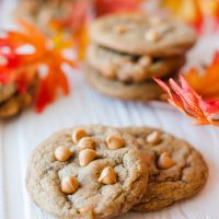 Chewy Pumpkin Spice Cookies with Butterscotch Chips