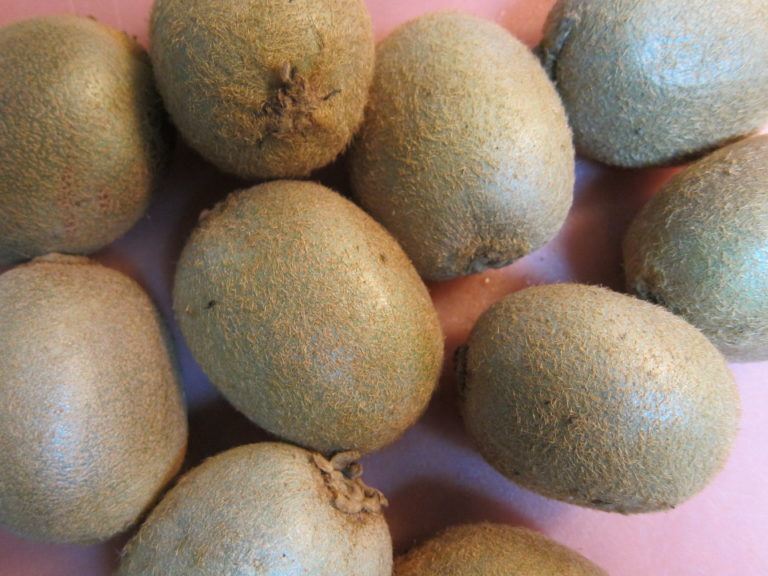 Fresh kiwifruit