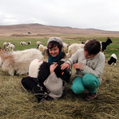 Spring Knitting Retreat Iceland with Helene Magnusson (3)