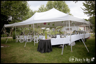 plymouth-michigan-party-planner-photos-by-miss-ann