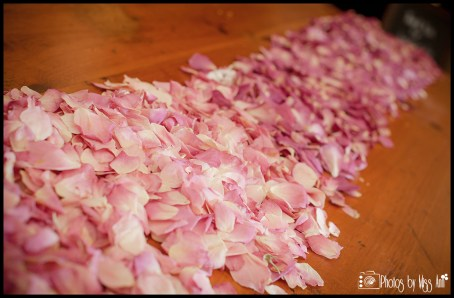 Rose Petals as a Table Runner Ideas Pink Ombre Flyboy Naturals Iceland Wedding Planner