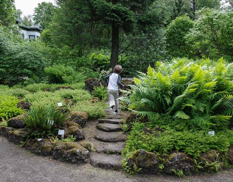reykjavik botanical gardens another path