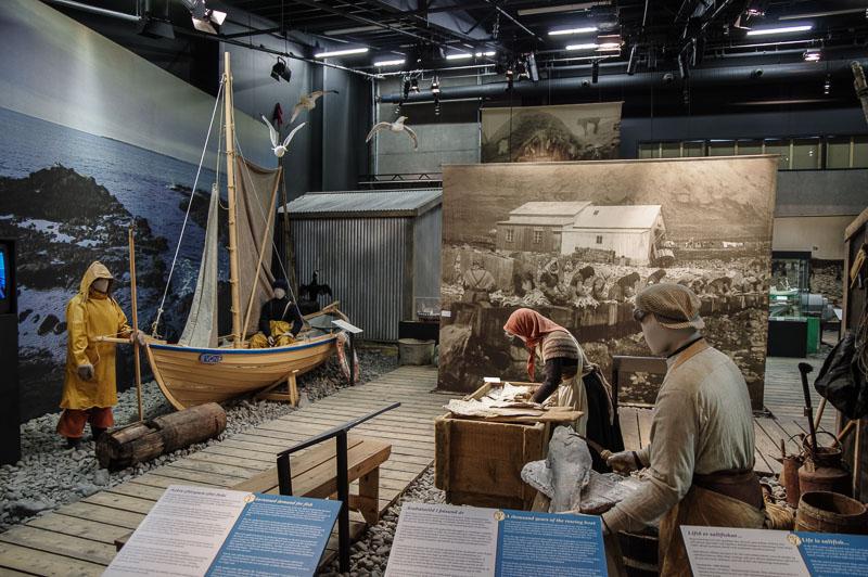 saltfish museum inside