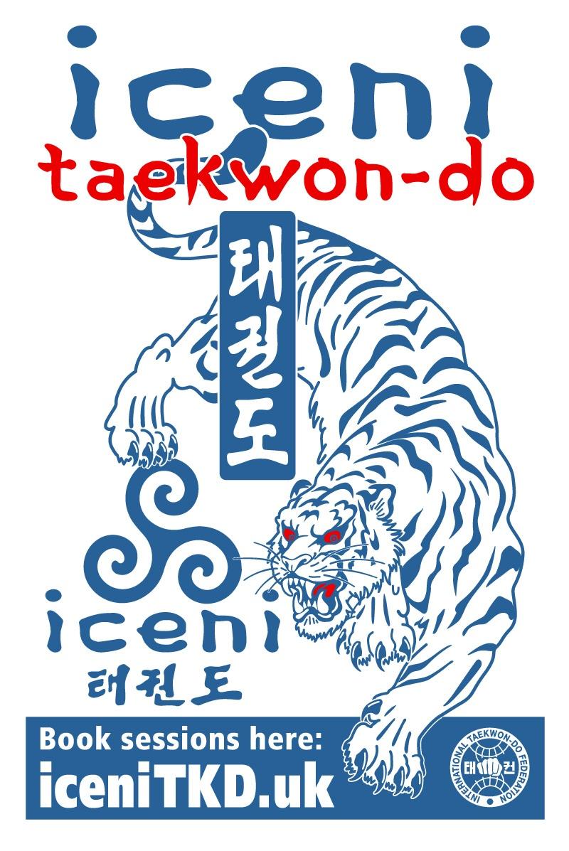 NEW ICENI Taekwon-do T-Shirts &Hoodies