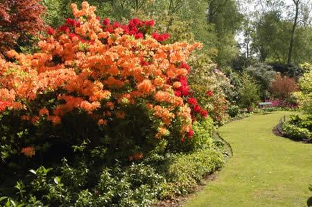 hoveton-hall-gardens-norfolk