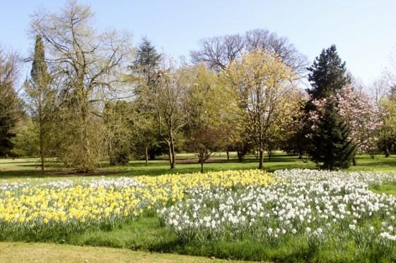 Bradenham-Hall-gardens