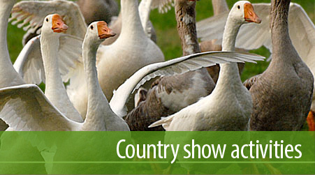weald country show