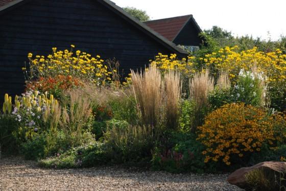 Shorelands-Wildlife-Gardens-
