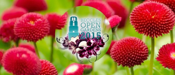 Beccles Charter Weekend 2015