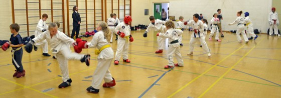 grading-sparring-10