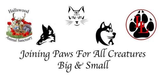 animal sanctuary jumble sale