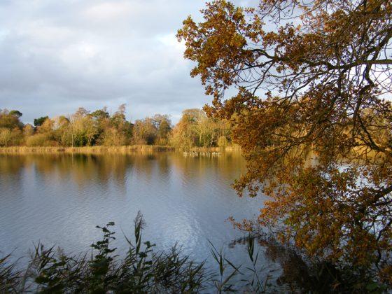 fairhaven_autumn-colours