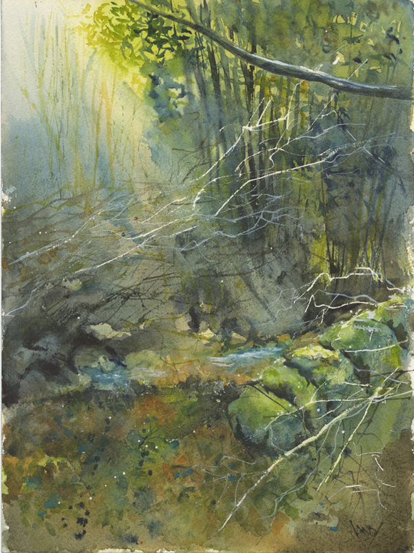 Society of East Anglian Watercolourists Old Stone Wall Derbyshire Vandy Massey Credit Vandy Massey