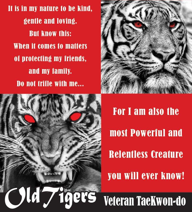 Old Tigers Veteran Taekwondo