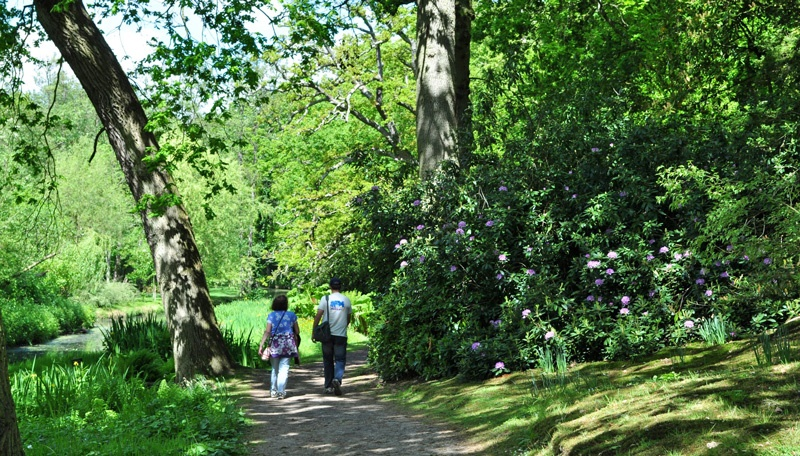 guided walking tour Fairhaven Woodland and Water Garden