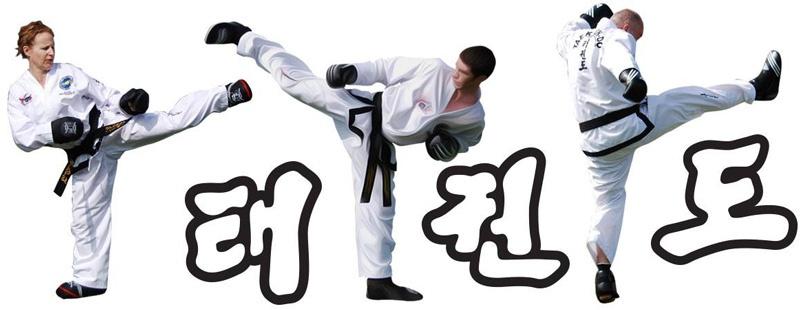 New Taekwondo Classes