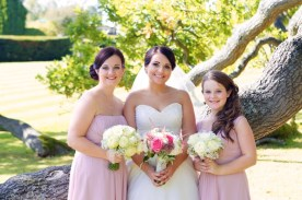 Beautiful bride and Bridesmaids in Pink Dresses Flower Monkey