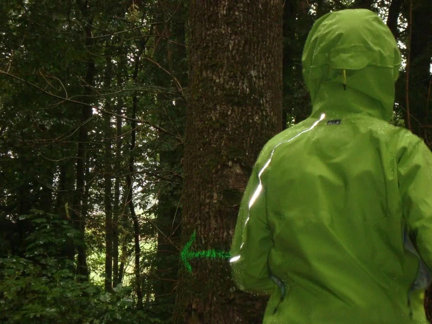 Terrex Test Jacket Adidas Icefeather Test 2WDHE9IY