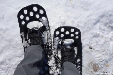 Fimbulvetr Snowshoes 14