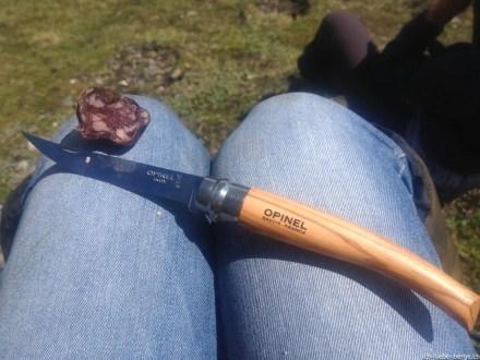Opinel Slim knife N°10 olive wood 4