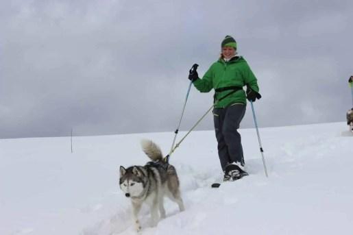 Wiebke Schneeschuh Husky