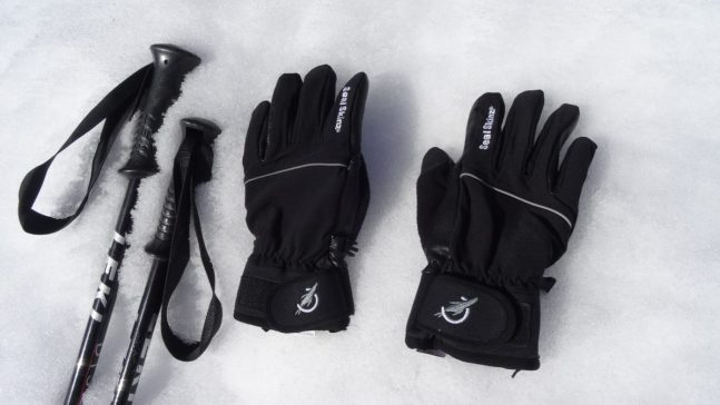 SealSkinz Activity Glove 19