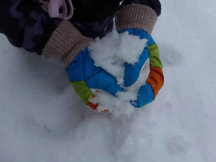 Hestra Swisswool Merino Gloves (8)